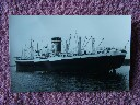 AN ORIGINAL B/W PHOTOGRAPH OF THE BLUE STAR LINE VESSEL 'THE AUCHLAND STAR'