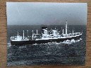 LARGE B/W PHOTOGRAPH OF THE BLUE STAR LINE VESSEL THE ENGLISH STAR