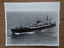 LARGE B/W PHOTOGRAPH OF THE BLUE STAR LINE VESSEL THE GEELONG STAR