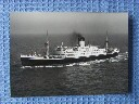 LARGE SIZE B/W PHOTOGRAPH OF THE SHAW SAVILL LINE VESSEL GOTHIC