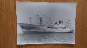 B/W PHOTOGRAPH OF THE VESSEL MONTREAL STAR TAKEN EARLY ON IN HER HISTORY