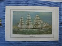 FULL COLOUR PRINT OF THE BEN LINE VESSEL THE BENCLEUCH 1875