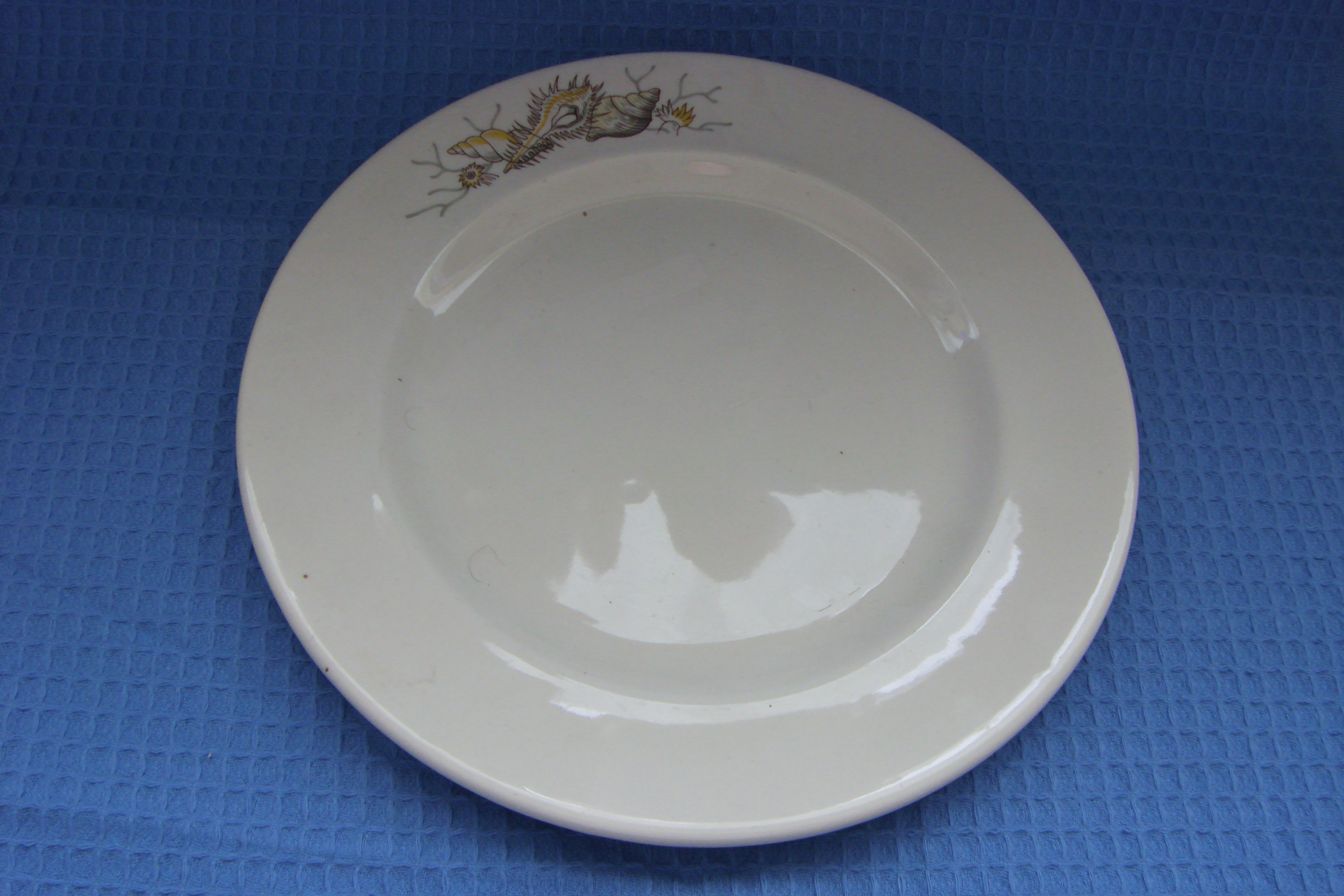 SEASHELL DESIGN MEDIUM SIZE PLATE FROM THE ORIENT LINE